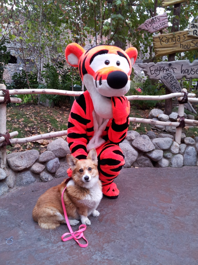 Pancake learns this is the last photo with Tigger....so sad.