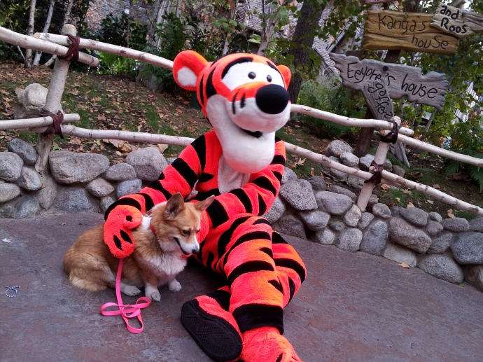 Tigger loved Pancake so much that he got down on the floor with her!