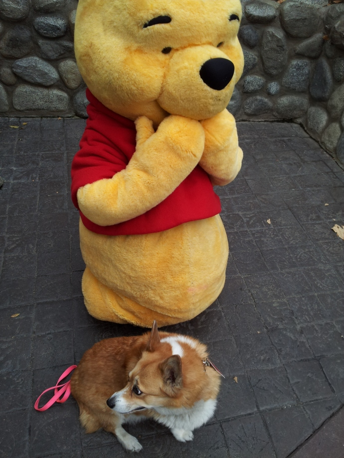 Pooh's getting a little excited hanging out with Pancake