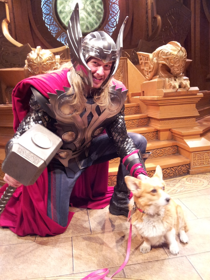 Apparently Thor LOVES dogs.