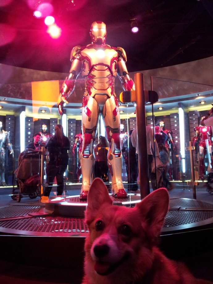 Pancake the Corgi and Ironman