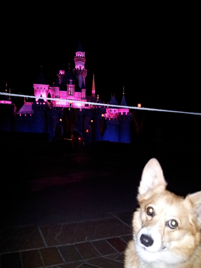 Pancake and the Magical Castle at Disneyland