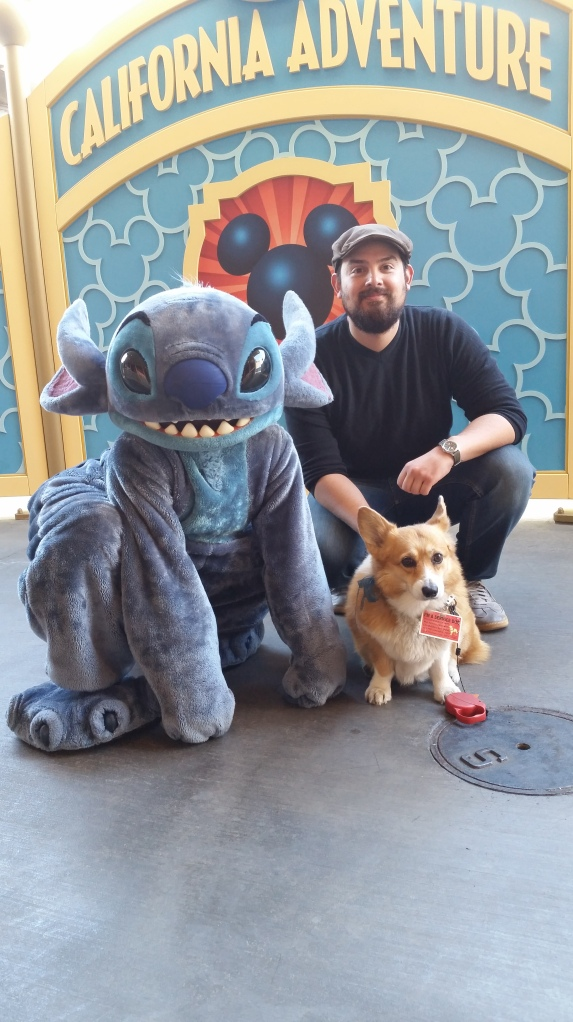 Pancake the Corgi at California Adventure with Cesar Zamora and Stitch